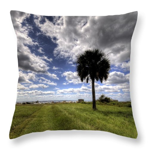 Fort Throw Pillow featuring the photograph Fort Moultrie Palm by Dustin K Ryan