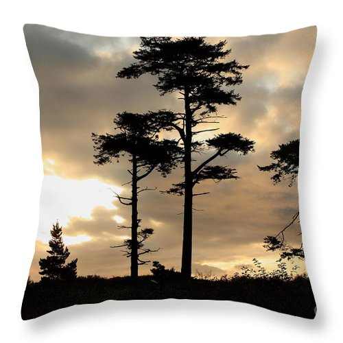 Sunrise Throw Pillow featuring the photograph Fort Worden Sunrise by Larry Whiting