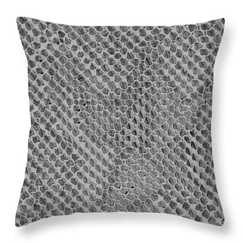 Soul Throw Pillow featuring the digital art Fossilized Remains Of The Soul by Wendy Rickwalt