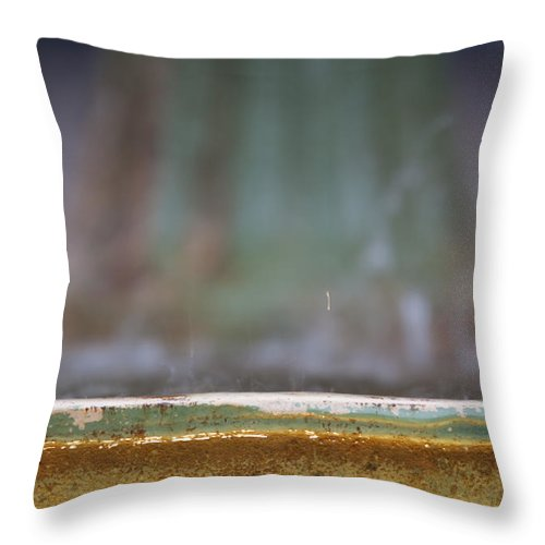 Fountain Abstract Art Charleston South Carolina Depth Of Field Throw Pillow featuring the photograph Fountain by Dustin K Ryan