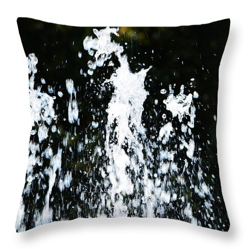 Gibbons Park Throw Pillow featuring the photograph Fountain Of Youth by Richard Andrews