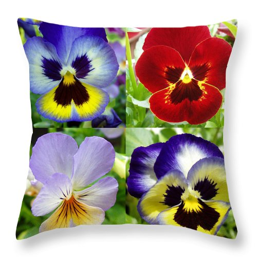 Pansy Throw Pillow featuring the photograph Four Pansies by Nancy Mueller
