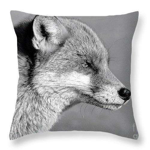 Fox Throw Pillow featuring the photograph Fox - Mono by David Rose-Massom