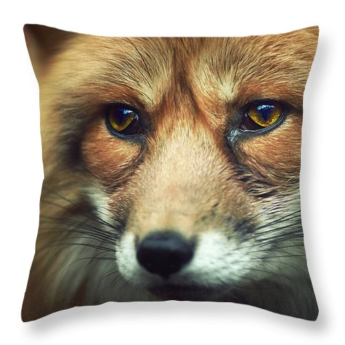 Animal Throw Pillow featuring the photograph Fox by Zoltan Toth