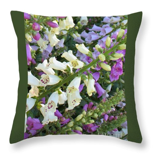 Purple And White Foxglove Throw Pillow featuring the photograph Foxglove Fancy by Carol Groenen