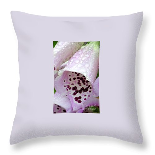 Foxglove Throw Pillow featuring the photograph Foxy Foxglove by Diane Greco-Lesser
