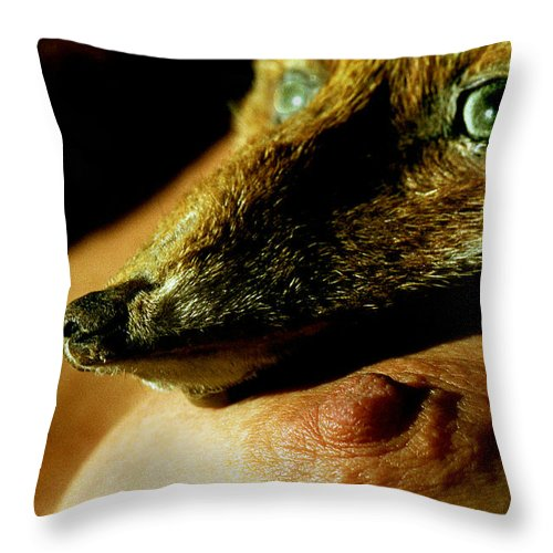 Fox Throw Pillow featuring the photograph Foxy Lady by Michael Mogensen