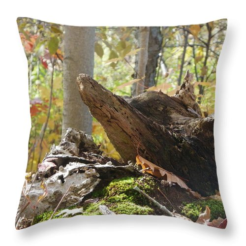 Nature Throw Pillow featuring the photograph Foxy Stump by Peggy King