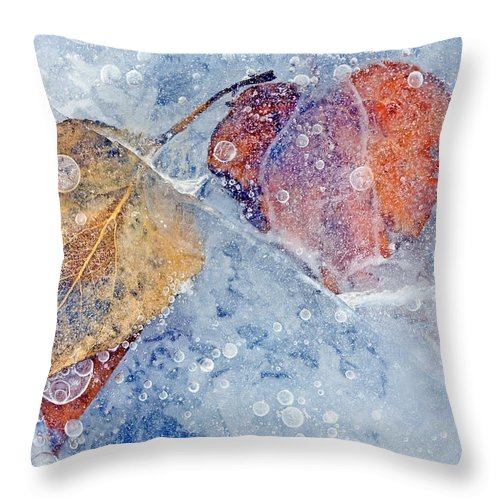 Ice Throw Pillow featuring the photograph Fractured Seasons by Mike Dawson