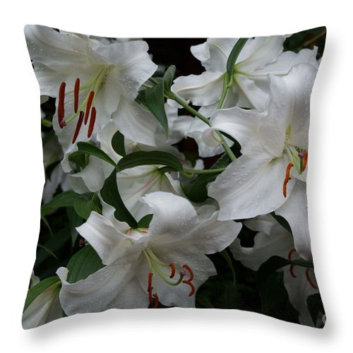 White Lilies Floral Throw Pillow featuring the photograph Fragrant Beauties by Joanne Smoley