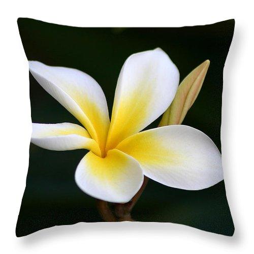 Plumeria Throw Pillow featuring the photograph Fragrant Hawaiian Plumeria Maui by Pierre Leclerc Photography