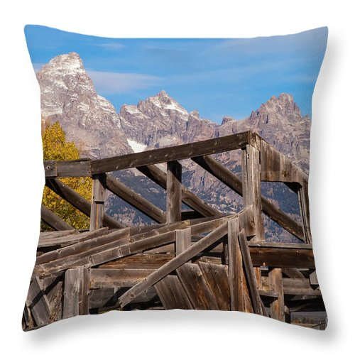 Jackson Hole Wyoming Throw Pillow featuring the photograph Framework by Bob Phillips