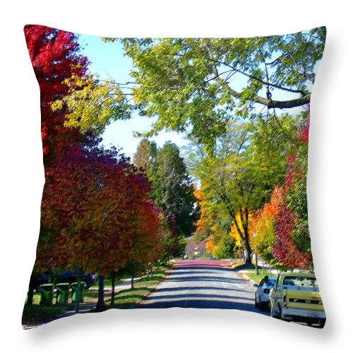 Landscape Throw Pillow featuring the photograph Franklin Street Liberty by Steve Karol