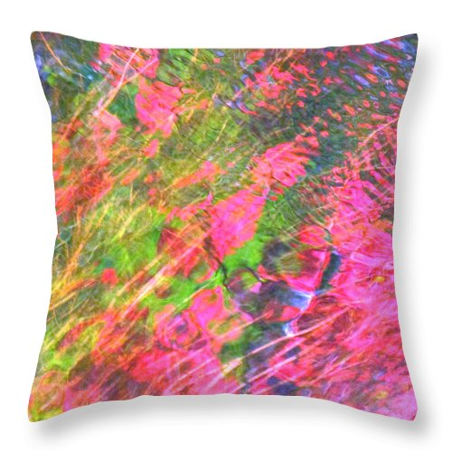Abstract Throw Pillow featuring the photograph Free And Wild As The Wind by Sybil Staples