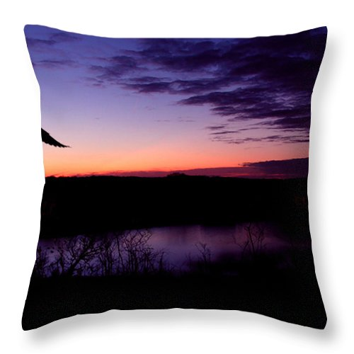 Dove Throw Pillow featuring the photograph Free by Kenneth Krolikowski