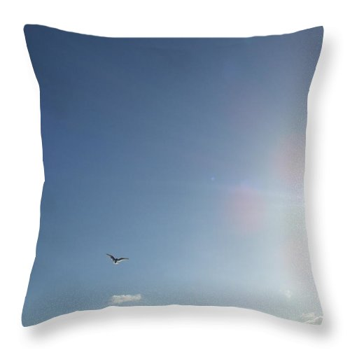 Wildlife Throw Pillow featuring the photograph Freedom by Vicki Berchtold