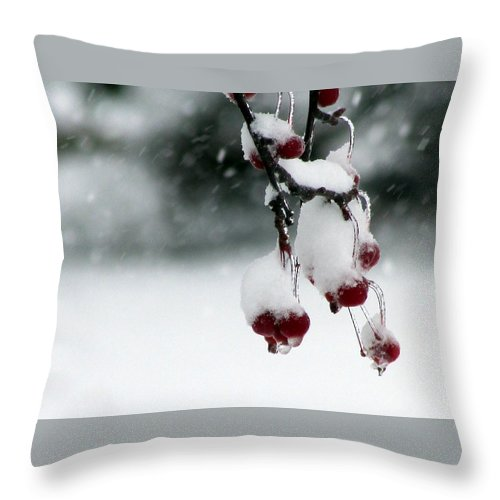 Berry Throw Pillow featuring the photograph Freeze Frame by Joni Moseng