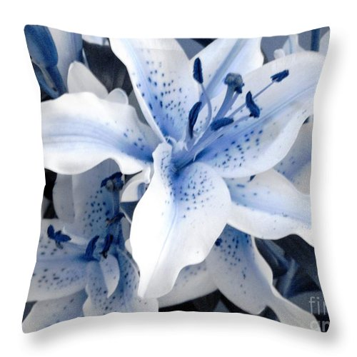 Blue Throw Pillow featuring the photograph Freeze by Shelley Jones