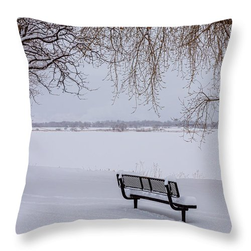 Snow Throw Pillow featuring the photograph Fresh Fallen Snow by James BO Insogna