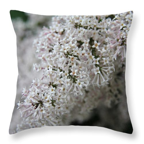 Flowers Throw Pillow featuring the photograph Fresh Lilac Perfume by Nelson Smith
