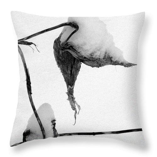 Snow Throw Pillow featuring the photograph Fresh Snow by Mark Grayden