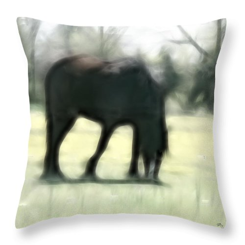 Tn Throw Pillow featuring the photograph Friend Of Distinction by Ericamaxine Price