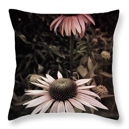 Tiwago Throw Pillow featuring the photograph Friend's Favorite Special by Photography by Tiwago