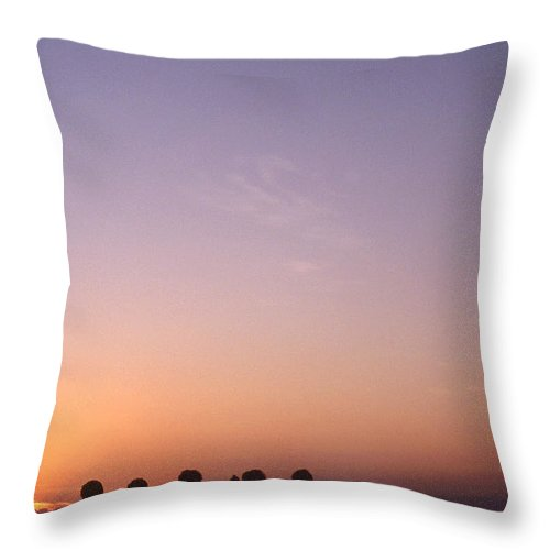 Bahia Throw Pillow featuring the photograph Friends by Patrick Klauss