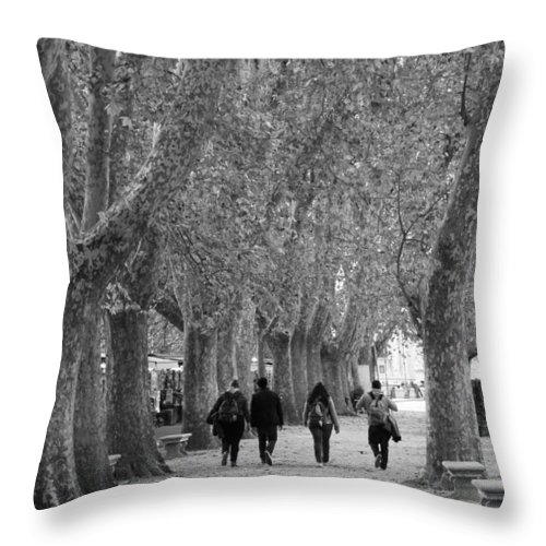 Landscape Throw Pillow featuring the photograph Friendship by Nicole Dunkelberger