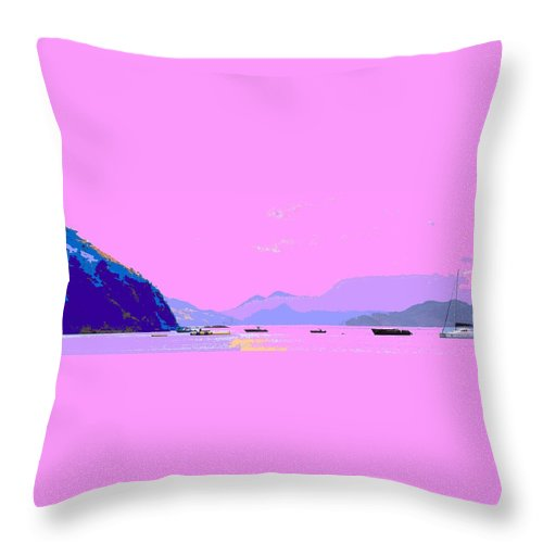 Frigate Throw Pillow featuring the photograph Frigate Bay Morning by Ian MacDonald