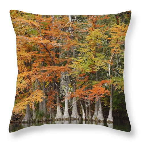 Fall Throw Pillow featuring the photograph Frio River #5 2am-27571 by Andrew McInnes