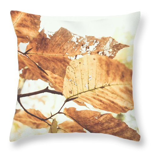 Fall Throw Pillow featuring the photograph From Below by Candida Tate