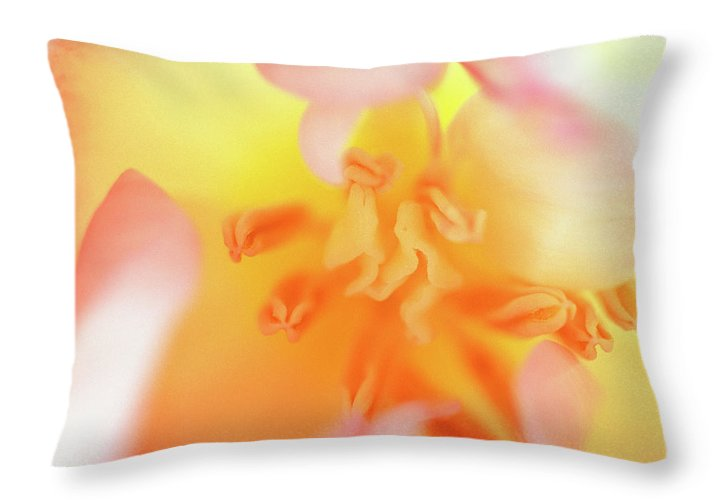 Internal Beauty Of A Tulip Throw Pillow featuring the photograph From The Heart by Bill Morgenstern