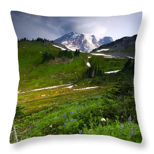 Rainier Throw Pillow featuring the photograph From The Top by Mike Dawson