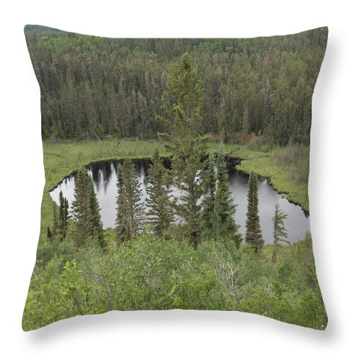 Esker Hills Saskatchewan Hanson Lake Road Lake Forest Water Trees Evergreen Scenery Wild Pond Throw Pillow featuring the photograph From The Top Of Esker Hills by Andrea Lawrence