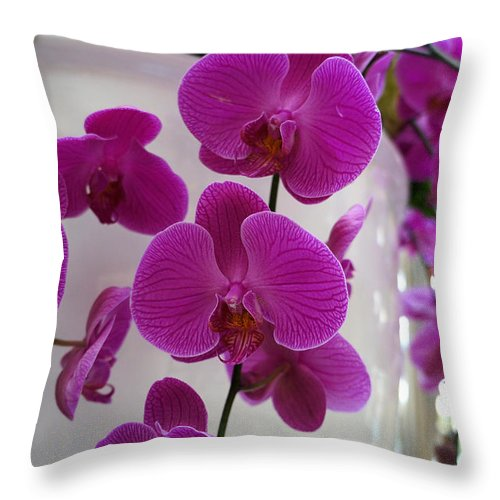 Ann Keisling Throw Pillow featuring the photograph From The Vase by Ann Keisling