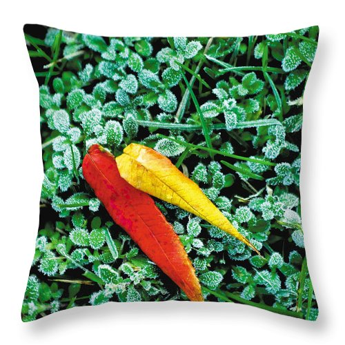 Leaves Throw Pillow featuring the photograph Frost And Leaves by Steve Somerville