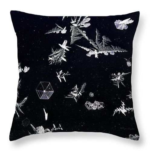 Beautiful Photos Throw Pillow featuring the photograph Frost On Car Window 1 by Roger Snyder