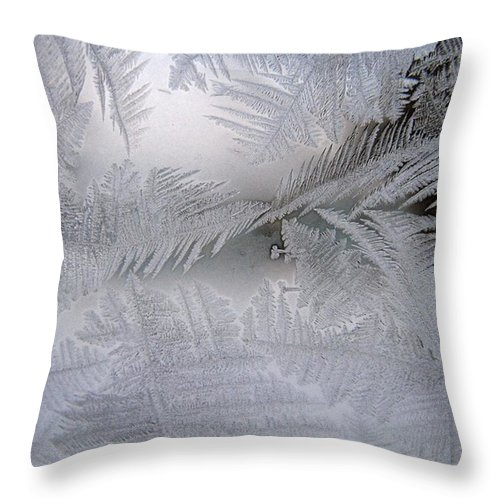 Frost Throw Pillow featuring the photograph Frosted Pane by Rhonda Barrett