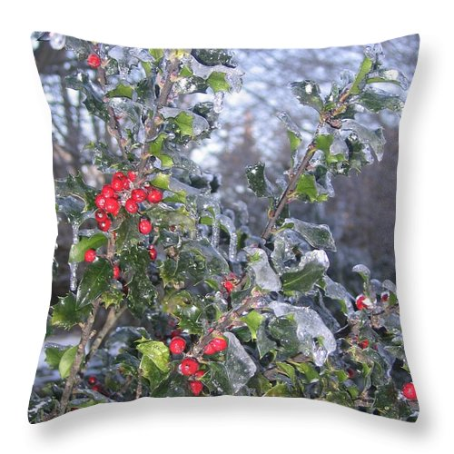 Winter Throw Pillow featuring the photograph Frozen In Time by Paula Emery