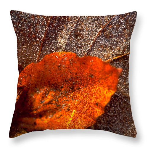 Leaf Throw Pillow featuring the photograph Frozen Leaf by Michael Mogensen