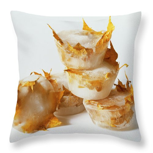 Composition Throw Pillow featuring the photograph Frozen Leaves by Stefania Levi