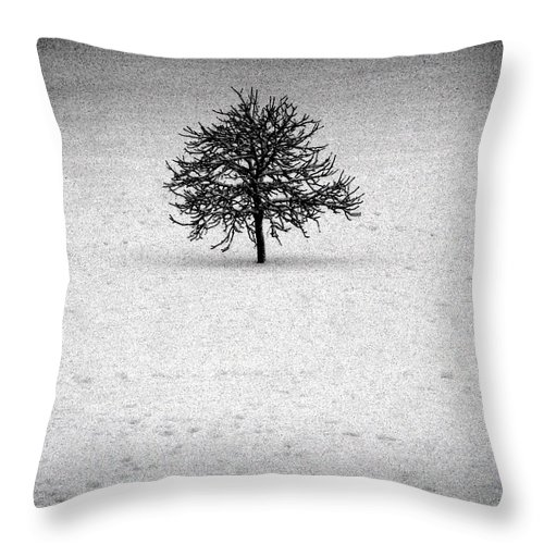 Black Throw Pillow featuring the photograph Frozen One by M Pace