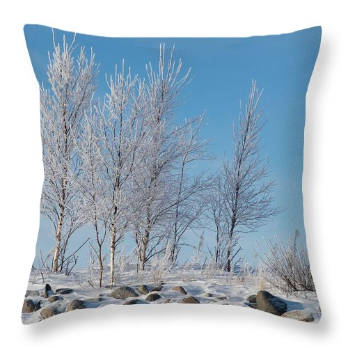 Talvi Throw Pillow featuring the photograph Frozen Views 2 by Jouko Lehto