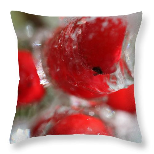 Berries Throw Pillow featuring the photograph Frozen Winter Berries by Nadine Rippelmeyer