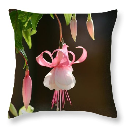 Fuchsia Throw Pillow featuring the photograph Fuchsia by Robert E Alter Reflections of Infinity