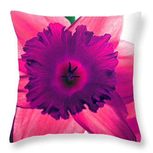 Pink Fuchsia Bloom Flower Daffodil Edit Photograph Digital Modern Edge Nature Throw Pillow featuring the photograph Fuchsia by Stevie Ellis
