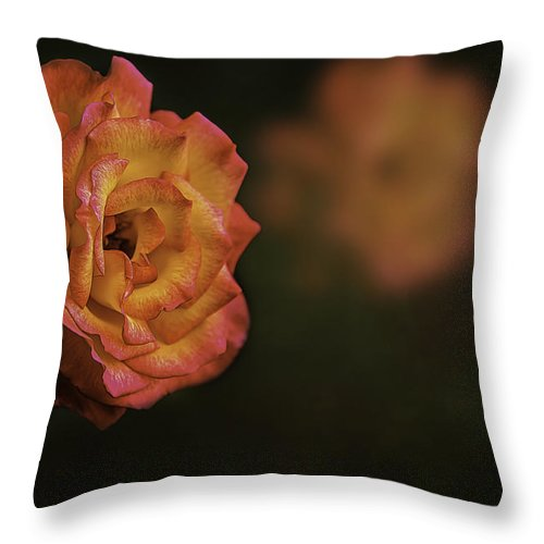 Flower Throw Pillow featuring the photograph Full Bloom by Maria Coulson