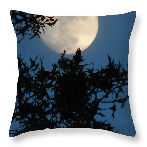 Patzer Throw Pillow featuring the photograph Full Moon by Greg Patzer