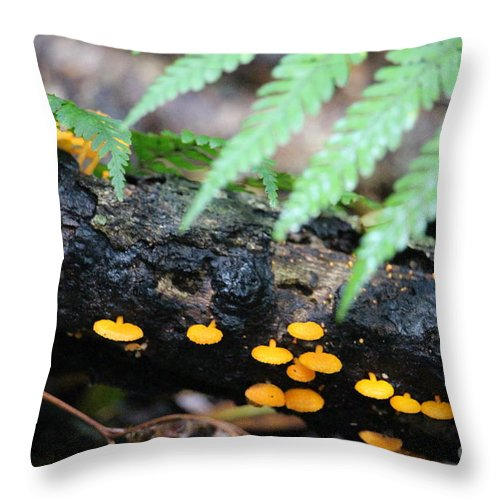 Small Throw Pillow featuring the photograph Fungi by Tali Turem